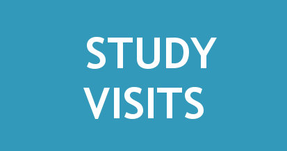 napis_study